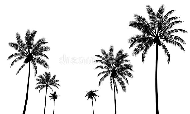 Ajuste as palmas das silhuetas ilustração do vetor