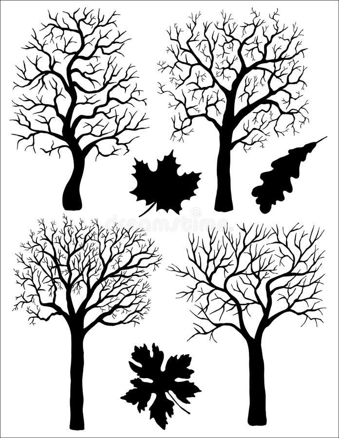Ajuste com folhas e árvores ilustração do vetor