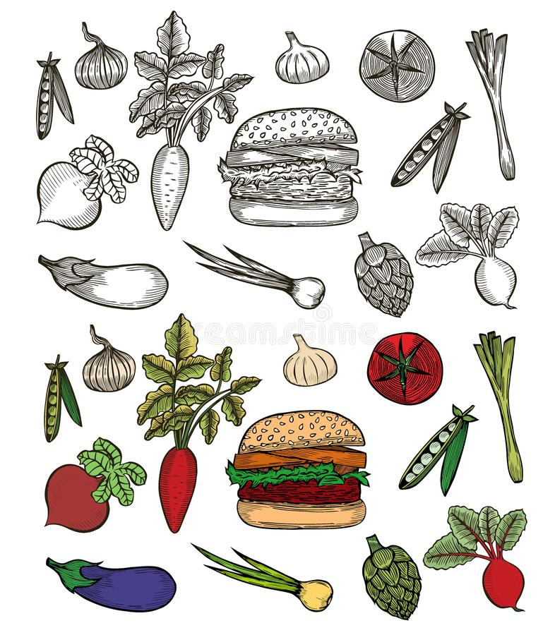 Ajuste com Hamburger ilustração do vetor