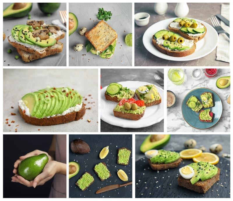 Ajuste com os sanduíches diferentes do abacate fotografia de stock