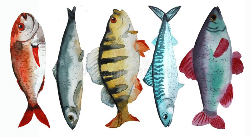 Ajuste com peixes ilustração stock
