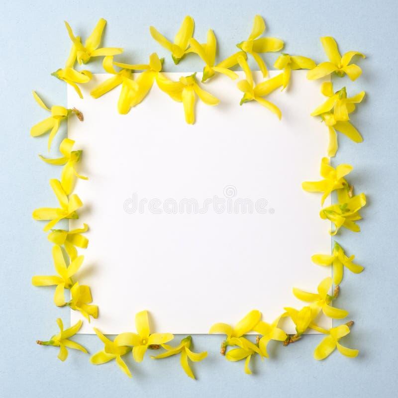 Ajuste creativo hecho de los p?talos amarillos de las flores y de nota en blanco de la tarjeta de papel Endecha plana La primaver imágenes de archivo libres de regalías
