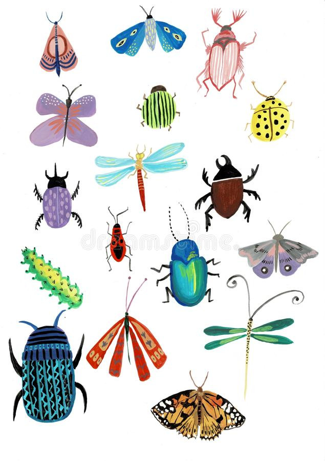 Ajuste da ilustração da aquarela dos insetos isolada no fundo branco para o projeto ilustração stock