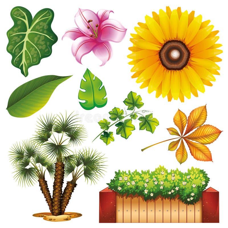 Ajuste da jardinagem isolada do tema dos objetos ilustração stock
