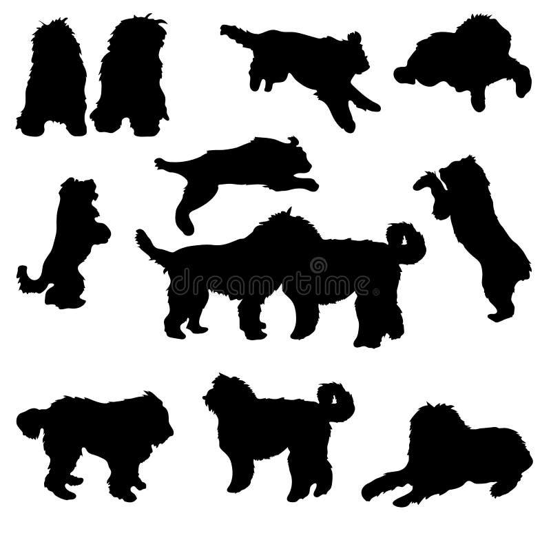 Ajuste da silhueta preta dos cães de cauda cortada no fundo branco ilustração stock