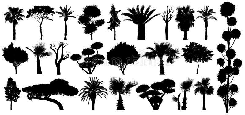 Ajuste das árvores e dos arbustos subtropicais Silhueta isolada do vetor em um fundo branco ilustração royalty free