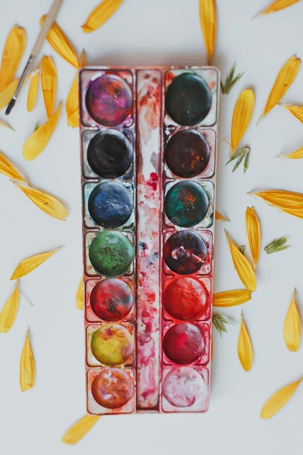 Ajuste das aquarelas misturado imagens de stock