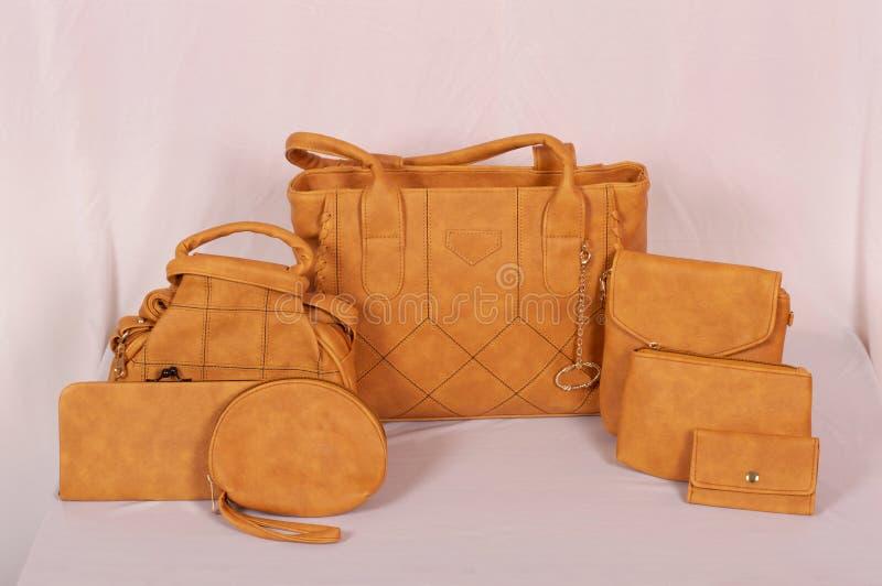 Ajuste das bolsas de couro das mulheres à moda novas fotografia de stock