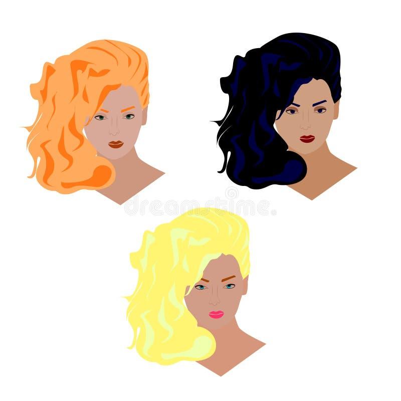 Ajuste das cabeças do tratamento de mãos com cabelo multi-colorido para cabeleireiro e estilistas ilustração do vetor
