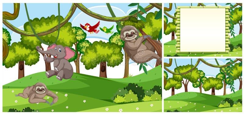 Ajuste das cenas animais da selva ilustração royalty free