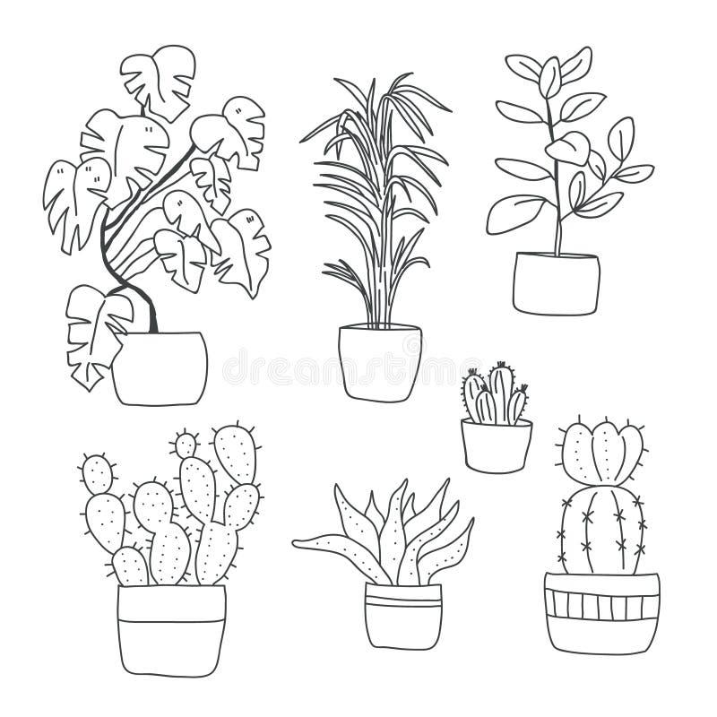 Ajuste das flores bonitos em uns vasos Plantas da casa ilustração royalty free