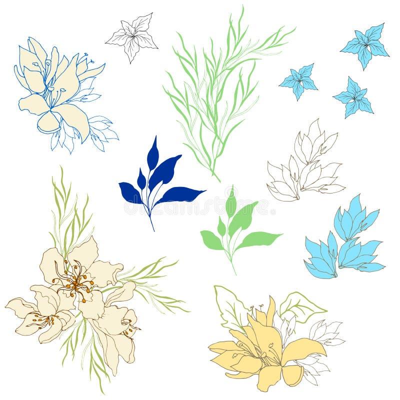 Ajuste das flores delicadas do vintage Flores do verão, desenhados à mão em um fundo branco Ilustra??o do vetor ilustração royalty free