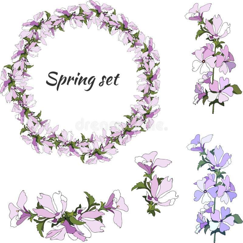 Ajuste das flores dos sylvestris do Malva em um fundo branco Grinalda floral das flores roxas e cor-de-rosa delicadas para decora ilustração do vetor