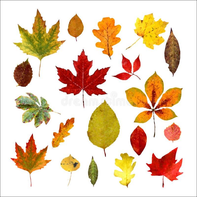 Ajuste das folhas de outono realísticas Baixo estilo poli Isolado em um fundo branco Ilustra??o do vetor ilustração do vetor