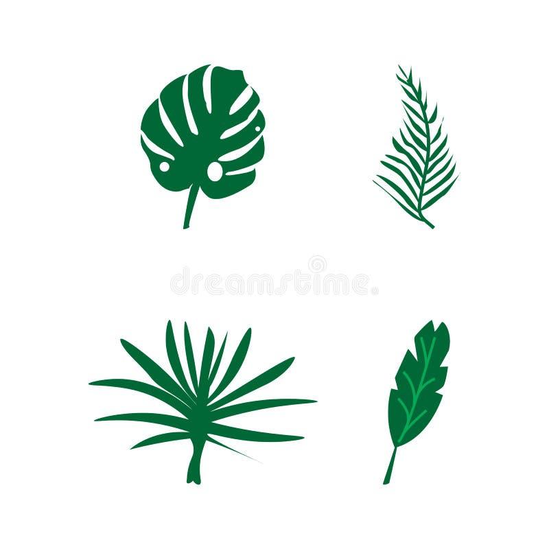 Ajuste das folhas de uma planta tropical isolada no fundo branco ilustração stock