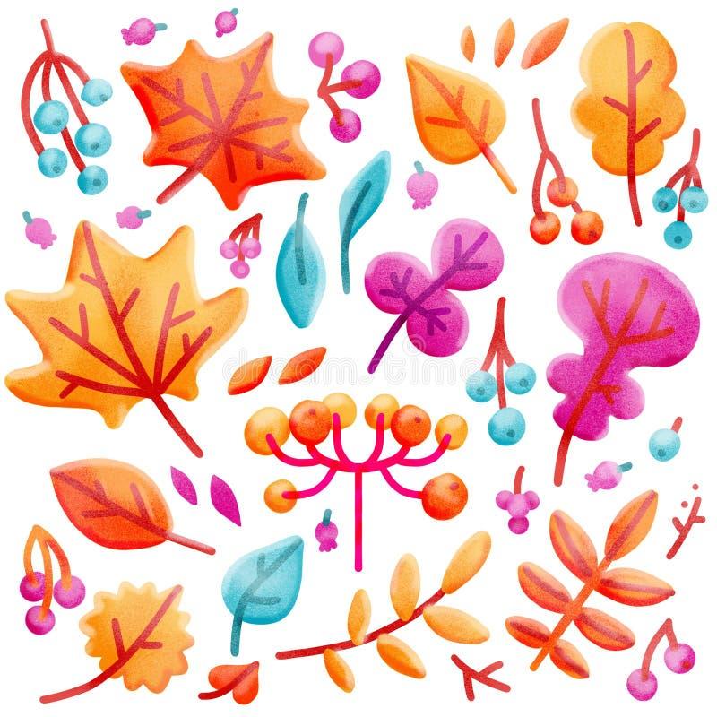 Ajuste das folhas e das bagas coloridas brilhantes de outono Isolado no fundo branco Estilo liso tirado dos desenhos animados mão ilustração stock
