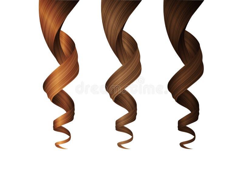 Ajuste das ondas do cabelo ondulado em várias cores Ilustração 3D realística do vetor ilustração do vetor