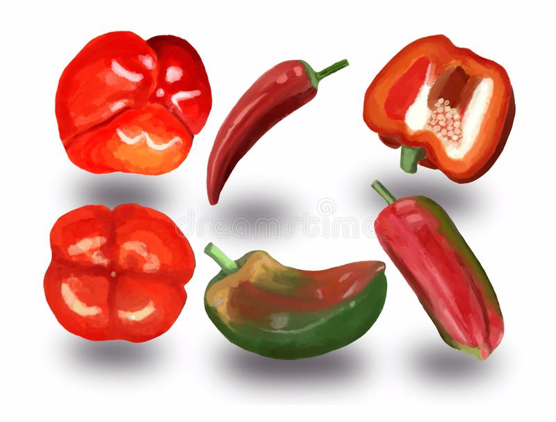 Ajuste das pimentas doces vermelhas e verdes e das pimentas de pimentão encarnados ilustração stock