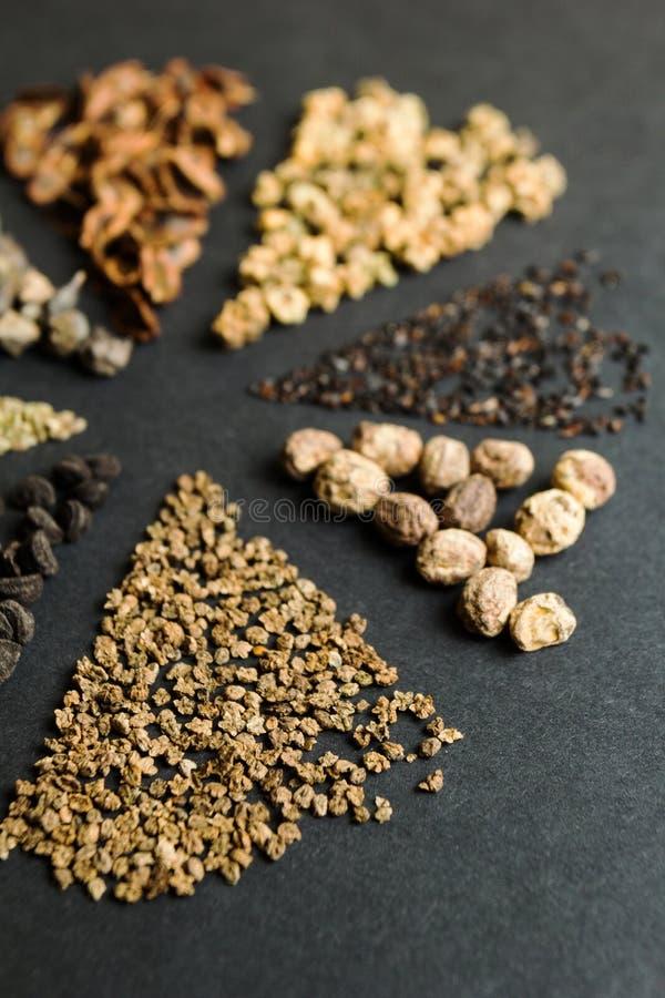 Ajuste das sementes em um fundo preto, foco vertical, seletivo imagens de stock royalty free