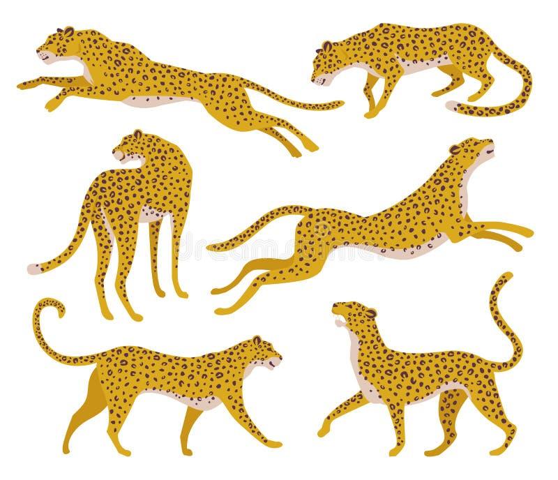 Ajuste das silhuetas abstratas dos leopardos Projeto da tra??o da m?o do vetor ilustração stock
