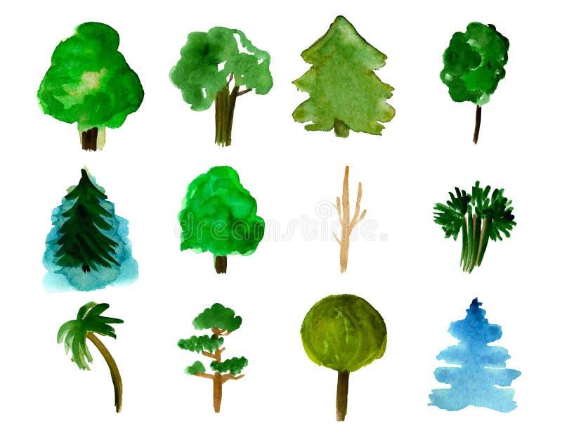 Ajuste de 12 árvores isoladas no fundo branco, na ilustração desenhado à mão da aquarela do pinho, no abeto, no salgueiro, na pal ilustração stock