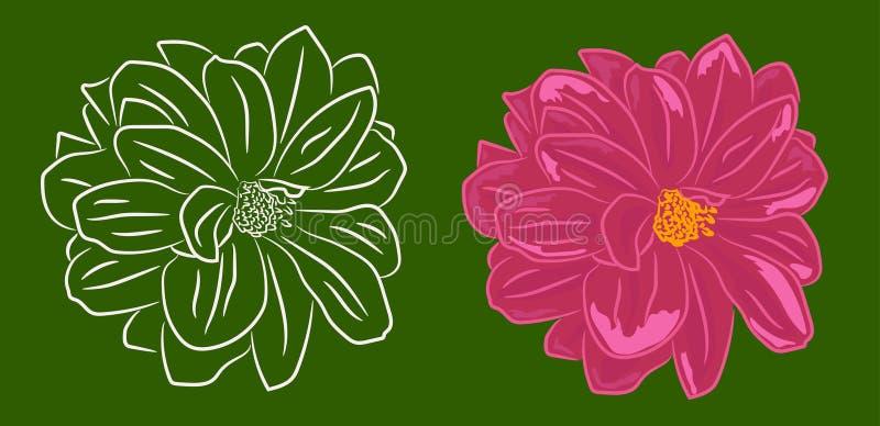 Ajuste de duas flores contornadas e com enchimento foto de stock