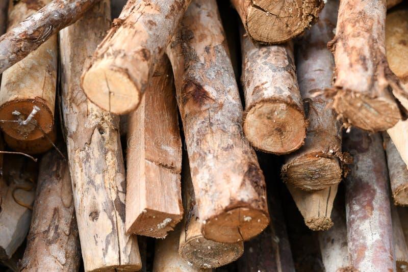 Ajuste de muitas madeiras do log foto de stock