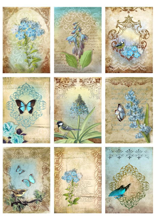 Ajuste de nove cartões do estilo do vintage etiqueta da borboleta azul do pássaro do amanhecer da colagem imagens florais ilustração stock
