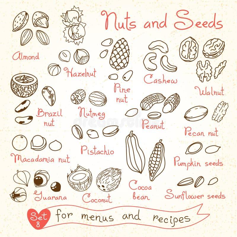 Ajuste desenhos das porcas e das sementes para menus do projeto ilustração stock