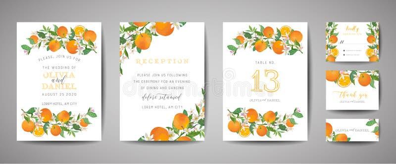 Ajuste do cart?o bot?nico do convite do casamento, do vintage salvo a data, do projeto do molde da laranja, dos citrinos, das flo ilustração do vetor