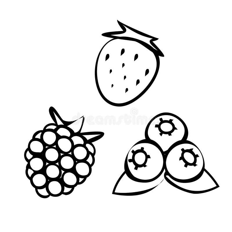 Ajuste dos ícones simples de frutos de baga - morango, mirtilo, framboesa ou amora-preta ilustração do vetor