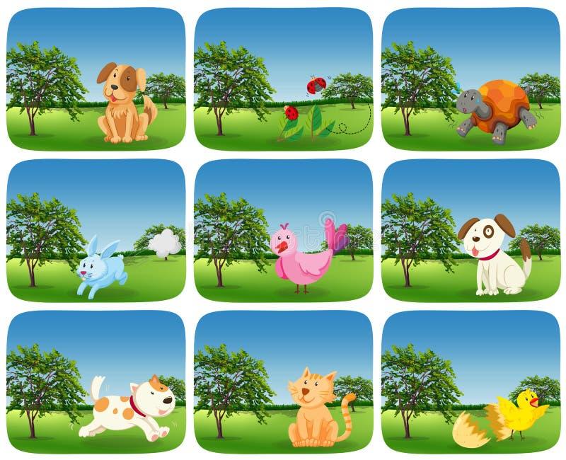 Ajuste dos animais na cena exterior ilustração do vetor