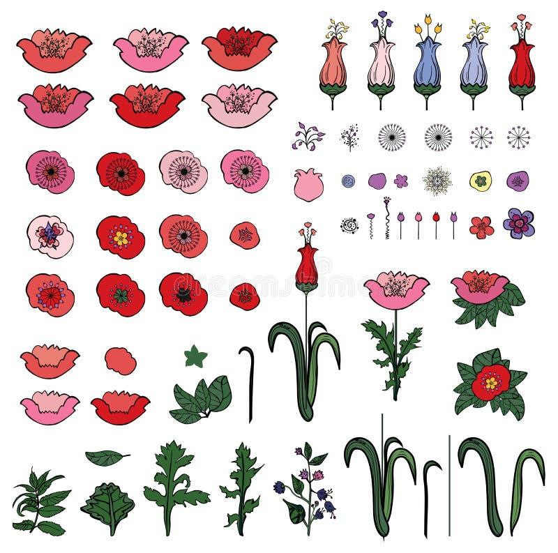 Ajuste dos elementos das papoilas e das tulipas isoladas no branco ilustração royalty free