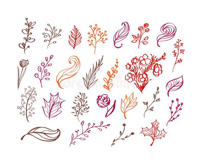 Ajuste dos elementos florais da garatuja do vetor Cole??o do outono Projeto gr?fico da flor Ervas, folhas, botas, copo e flores s ilustração stock