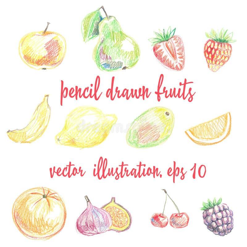 Ajuste dos frutos e das bagas lápis-tirados Desenho da carta branca imagem de stock royalty free