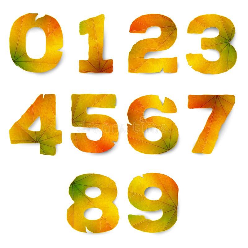 Ajuste dos números do vetor feitos das folhas de outono ilustração royalty free