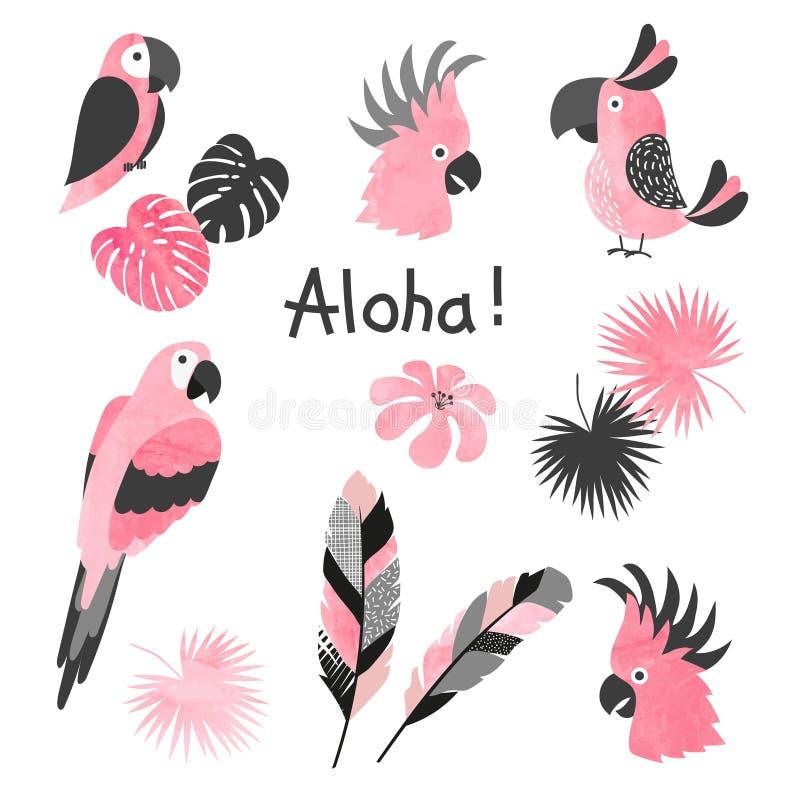 Ajuste dos papagaios cor-de-rosa bonitos da aquarela Coleção do vetor de pássaros tropicais ilustração do vetor