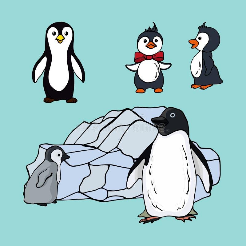 Ajuste dos pinguins das espécies diferentes, ilustração de uma família de pinguins das ave marinho em um fundo azul ilustração royalty free