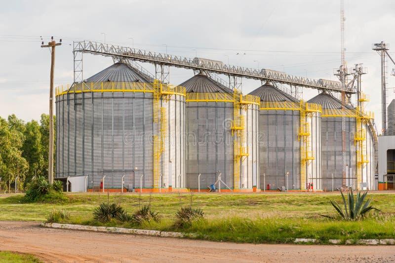 Ajuste dos silos maiorias em Brazi recebendo o feijão de soja 02 fotos de stock