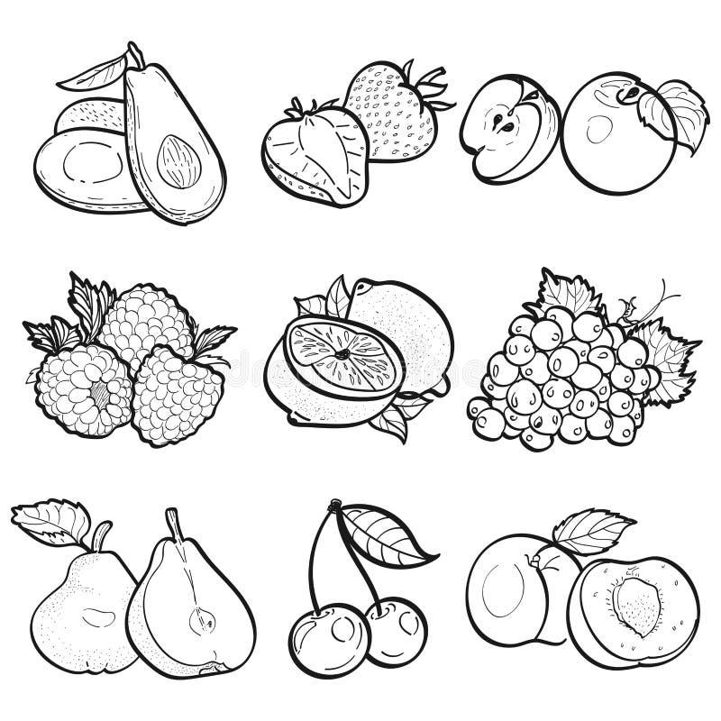 Ajuste a garatuja da coleção dos frutos pela ilustração do vetor imagens de stock royalty free