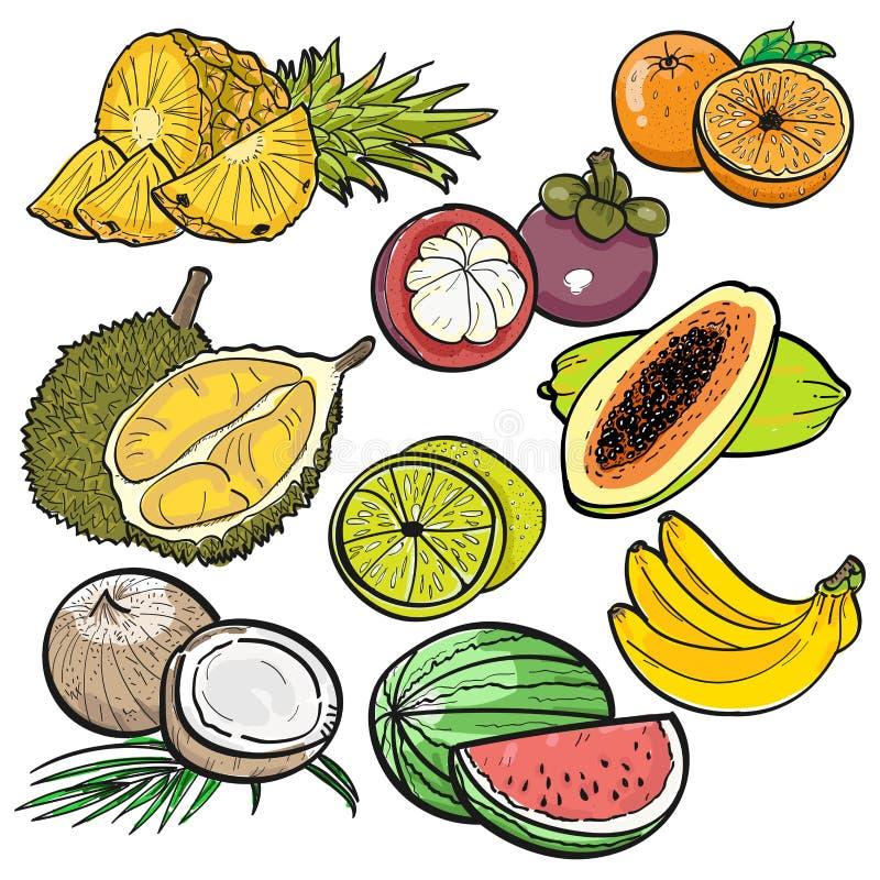 Ajuste a garatuja da cor de frutos tropicais no fundo branco pela ilustração do vetor fotografia de stock