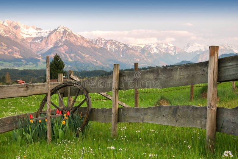 Ajuste hermoso de flores, del cartwheel y de la cerca de madera Montañas de la puesta del sol foto de archivo libre de regalías