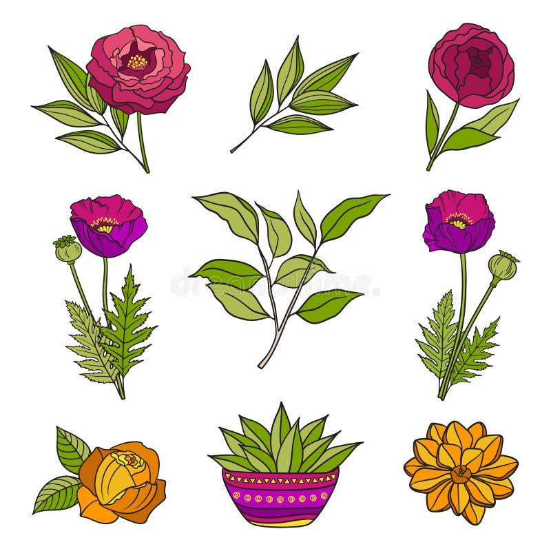 Ajuste mão floral dos elementos tirados ilustração do vetor