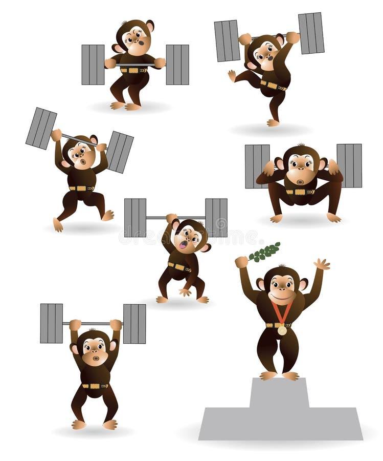 Ajuste o halterofilismo do amor do macaco fotos de stock royalty free
