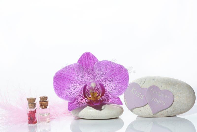 Ajuste para o dia de Valentim com pedras, flor da orquídea e a pena cor-de-rosa no fundo branco imagens de stock