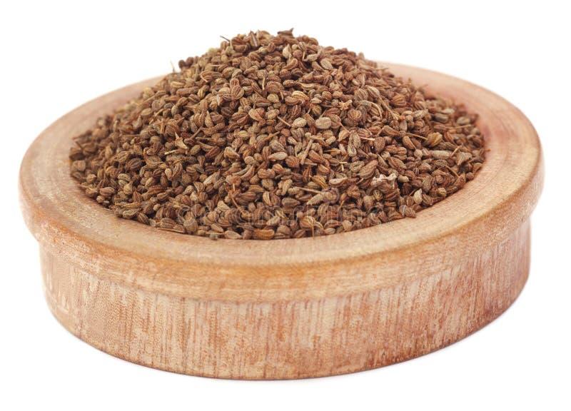 Ajwain-Samen in einer hölzernen Schüssel stockbild