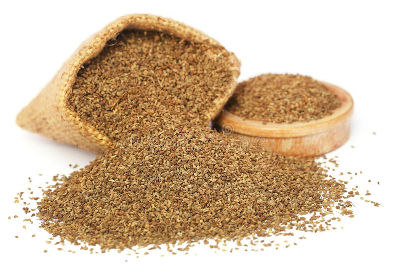 Ajwain seeds. In sack and a wooden bowl royalty free stock image