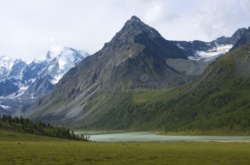 ak altai belukha在俄国附近的kem湖mt 免版税库存图片