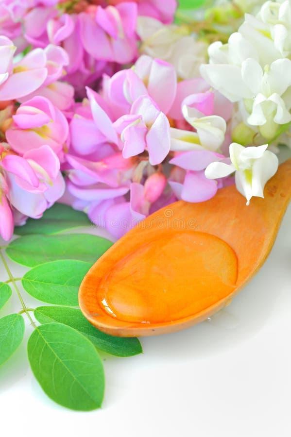 akaci kwiatów miodu łyżka drewniana obrazy stock