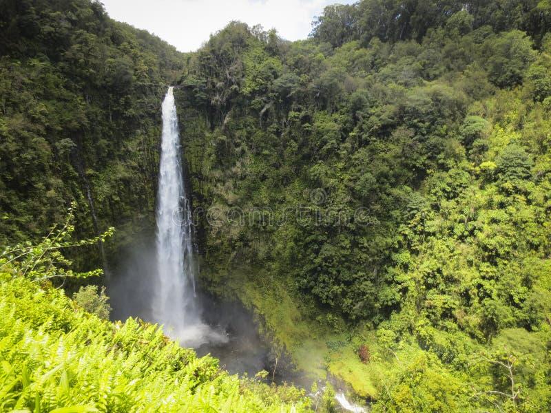 akaka понижается Гавайские островы стоковое фото rf
